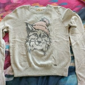 Hollister Sweater - Wildcat with Hat